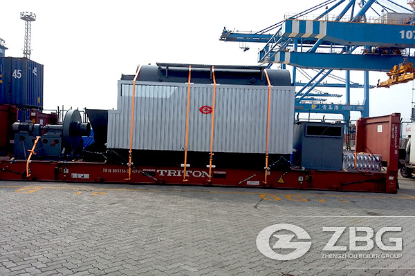 4 Ton Biomass Fired Boiler Exported to Bali Indonesia