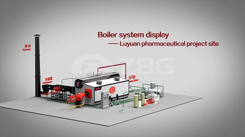 SZS oil and gas fired boiler--ZBG