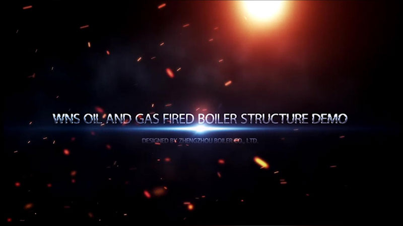 WNS oil and gas fired boiler manufacture--ZBG