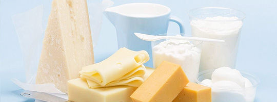Dairy products manufacturing industry