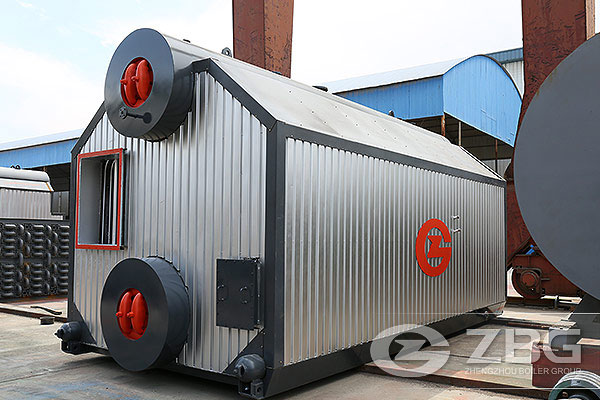 Indonesia 6t Biomass Fired Steam Boiler