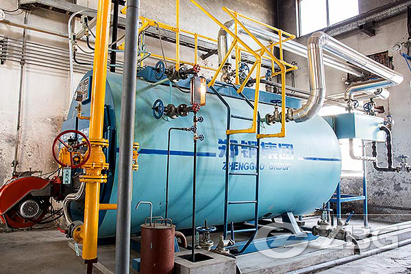 2 Ton/hr Gas Steam Boiler Project in Coating Factory