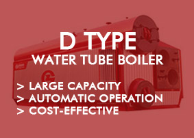 Gas & Oil Water Tube type boiler