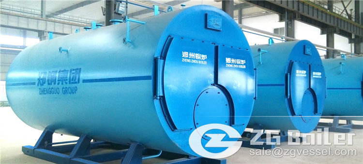 wns gas fired boilers